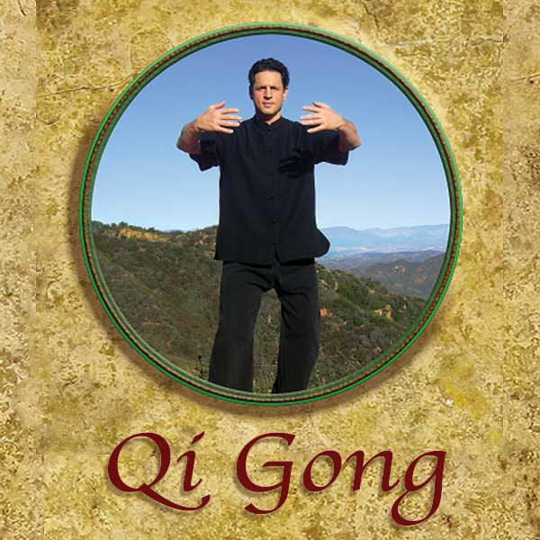 Qi Gong 1 – Holding the Universal Ball – Beginner Level with Peter Shane (DVD)